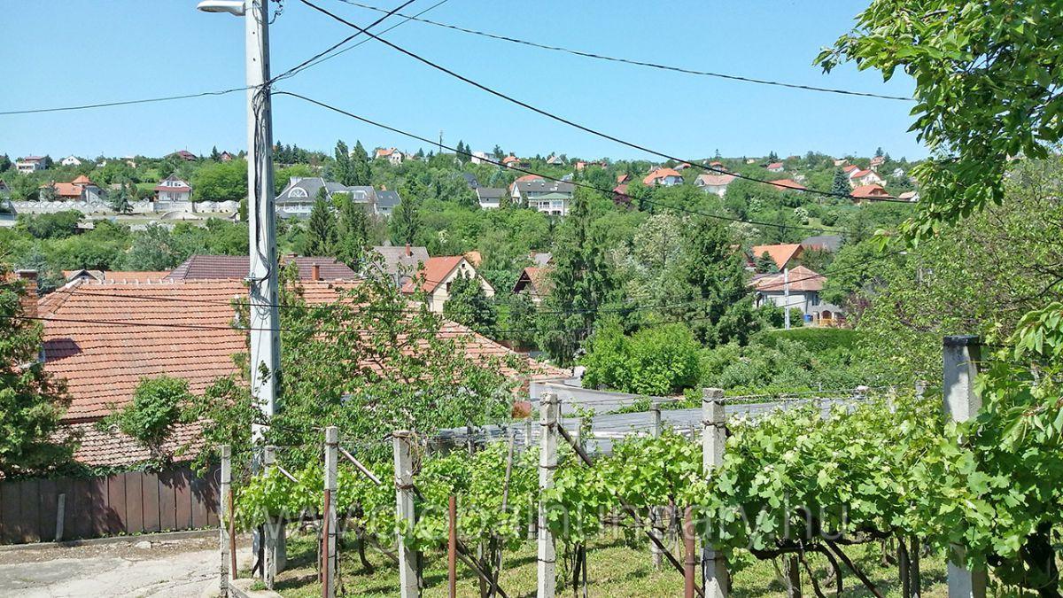 Pécs,Magyarürögi út elején,4sz.ház csendes helyen