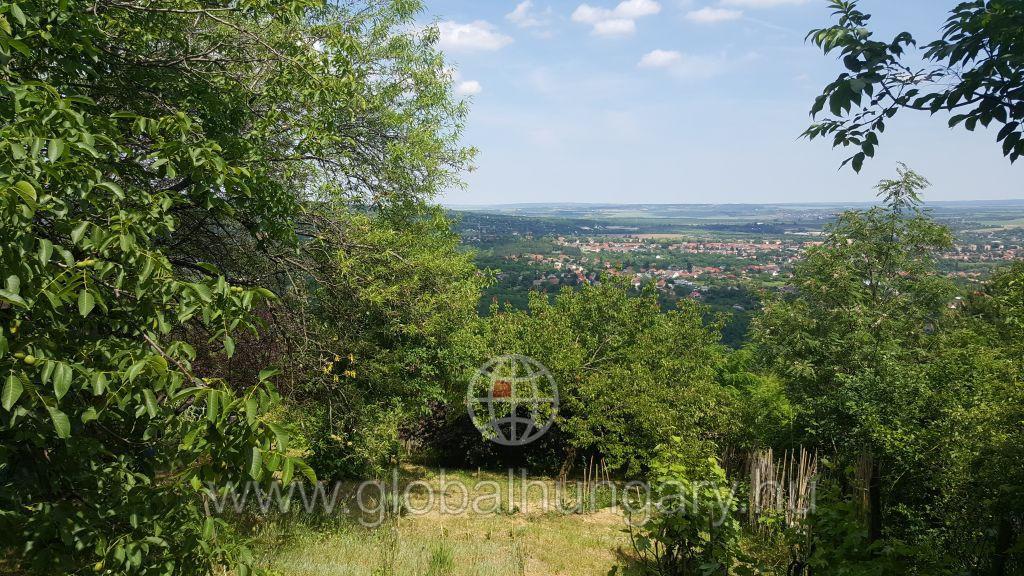 Pécs Mecsek oldalon 1200 m2-es telek eladó
