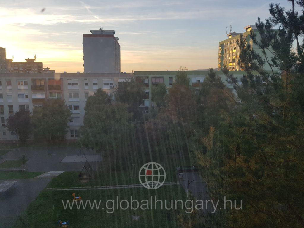 Pécs kertvárosában 2 szobás panel lakás eladó