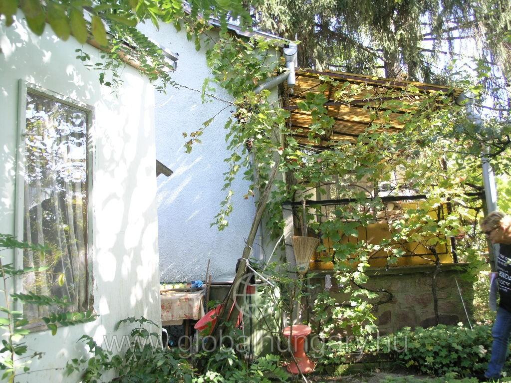 Bajmi - Tető dűlőben erdő mellett, patak partján kis házikó.