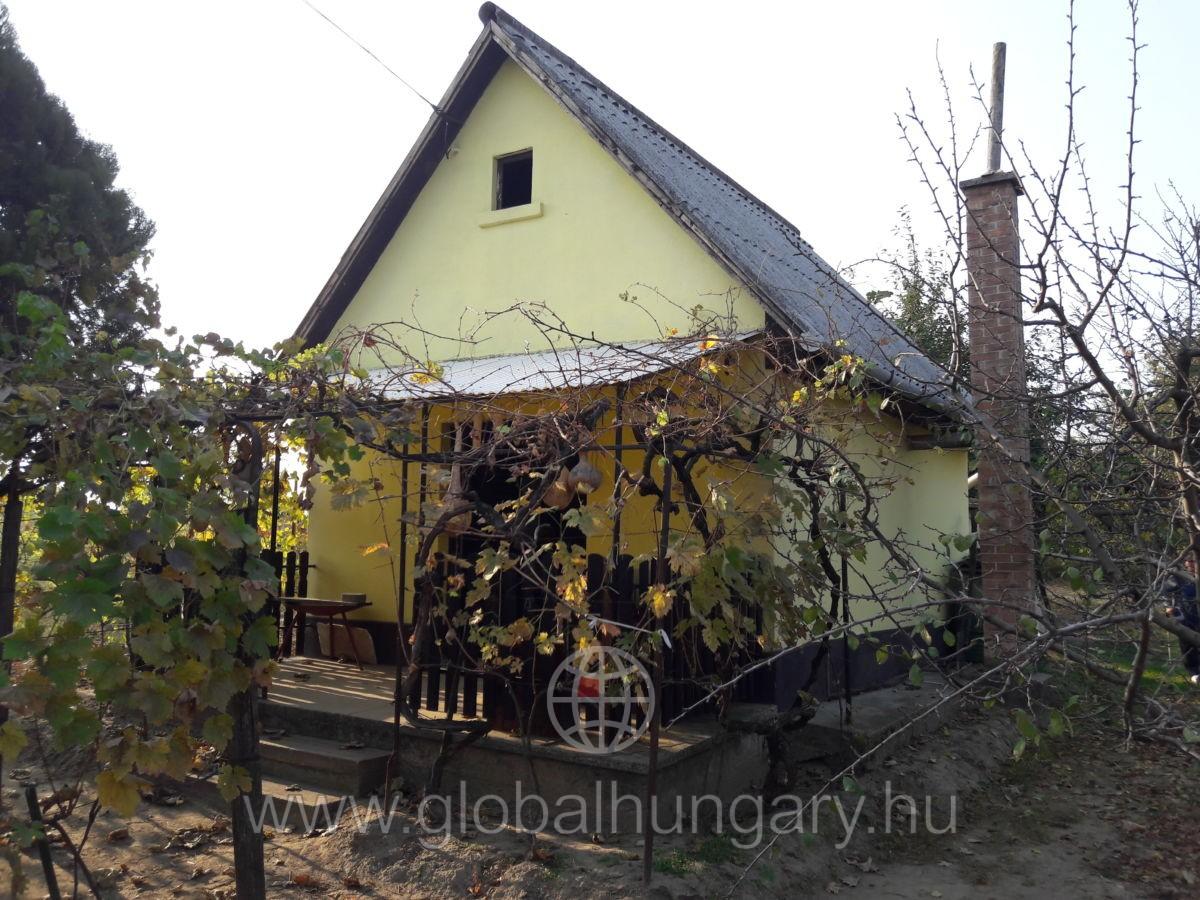 Monor, Strázsa-hegyen 1504 nm szőlő + pince eladó
