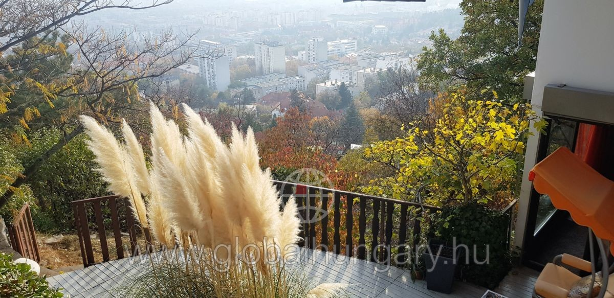 Pécs belváros közeli, örök panorámás, felújított ház eladó