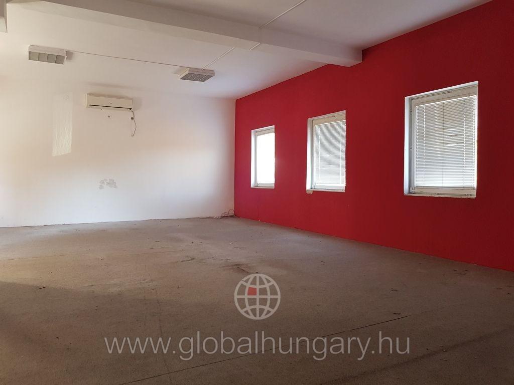 Pécs egyetem közelében 300m2-es lakóingatlan eladó