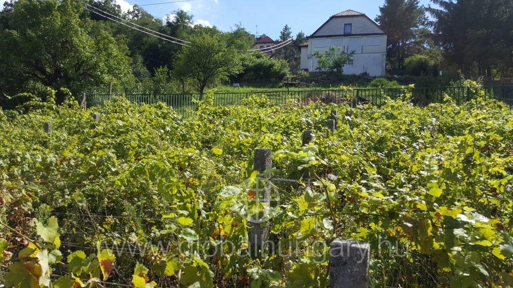 Pécs Mescek oldalon közműves ház eladó