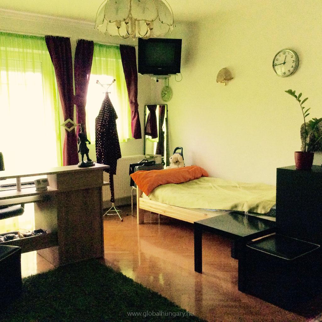 Budapest XI.kerület zöldövezetében társasházi lakás